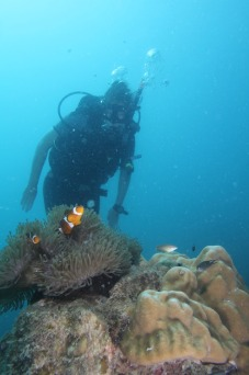 Me diving in Malaysia