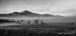 Dan Thompson (@danthompson_TN) of the USA caught this moody B&W of the fog lifting: http://www.flickr.com/photos/danandhollyt/10637615236/