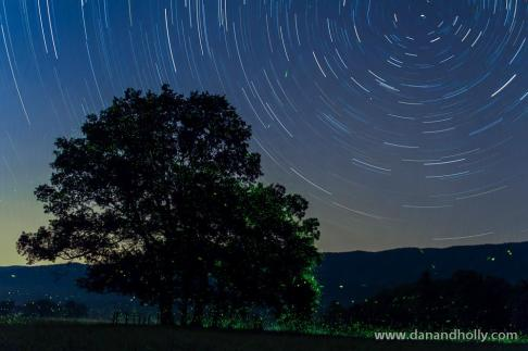 Dan Thompson (@danthompson_TN) of the USA invested time and created this wonderful skylapse--with fireflies! http://www.flickr.com/photos/danandhollyt/7291383462/