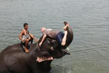 Dan Thompson (@danthompson_TN) of the USA made us wonder what the heck he was doing in this photo, but just as soon as I started wondering, I started being jealous. And is it just me, or is the elephant laughing? https://www.flickr.com/photos/danandhollyt/5303800740/in/set-72157625698591572