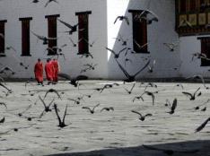 @easytoursofasia of the USA caught this lovely street shot in Bhutan: http://ow.ly/i/5xMhQ