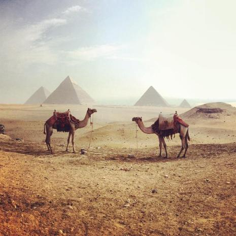 @Jessisawanderer chose the mysterious desert as her destination of choice: https://twitter.com/Jessisawanderer/status/536986033574133760/photo/1