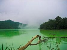 Kanishka (@kp1200) of India shared this serene and green landscape of Indonesia: pic.twitter.com/bhjXGbWBrl