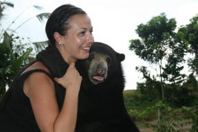 This week's guest co-host Melissa (@melbtravel) of the UK is all smiles (on the outside, at least) as this bear in Indonesia goes in for a hug: pic.twitter.com/Nus9LDF5mP