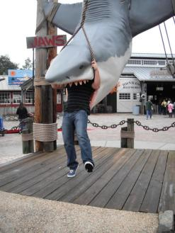 Who says we take things seriously? Ben (@HugePartyTravel) of the USA obviously doesn't either, so he posted this photo of his close encounter with Jaws: http://t.co/sz3AWHgy2y