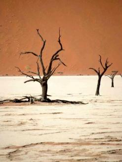 Paul Caddy (@PaulSCaddy) of the UK capture Namibia's stark landscape perfectly: pic.twitter.com/7Tt4bhuYSM