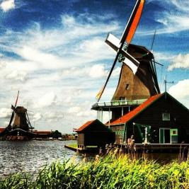 Co-host Savannah (@sihpromatum) of Holland made us all jealous with her many shots of everyday Dutch spring surrounds: pic.twitter.com/hdPArqyPdA
