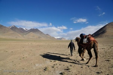 Two camel photos, very different places. Co-host Shane Dallas (@TheTravelCamel) of Dubai went camel trekking in Tajikistan: http://t.co/JqGMHzN5Yn