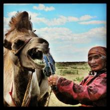 Co-host Savannah Grace (@Sihpromatum) of Holland caught the perfect moment during a Mongolian woman's average day: pic.twitter.com/rAZjkERFDr