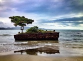 Exotic? Well, odd, at least! This shipwrecked tree photo from Costa Rica is brought to you by @WandaLusta of Sweden: https://twitter.com/WandaLusta/status/493847111688273920/photo/1