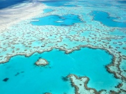 When @_TheWeekender went flying over the Great Barrier Reef from the Whitsunday Islands, she captured the quintessential exotic photo: https://twitter.com/_TheWeekender/status/493843819184799744/photo/1