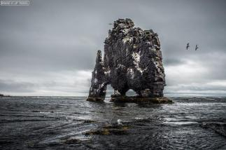 This stunning but bleak shot of Iceland is brought to you by @Branditup_IT of Italy. Wow! https://twitter.com/Branditup_IT/status/503990931557982210/photo/1