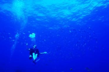 Diving a wreck