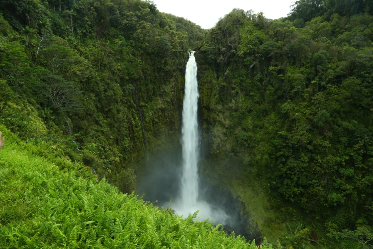 The beautiful green Akaka Falls