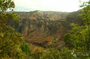 The golden hour in Waimea Canyon on the Canyon Trail