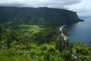 About to hike down into Waipio Valley